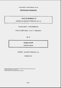 Image budget primitif CM 29 avril 2014