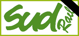 logo sud rail pse
